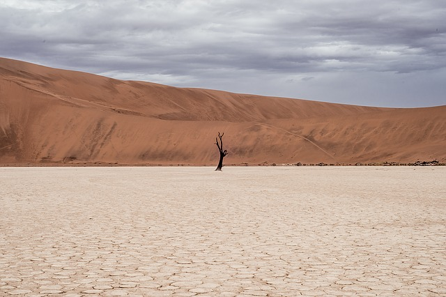 a desert, deserted and barren